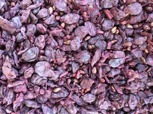 marc de raisin rouge - anthocyanes